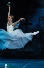 московский театр новый балет отзывы немолодых леди хотят